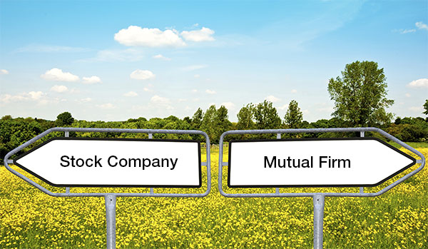 Stock and Mutual Insurance Companies