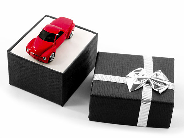 Protecting Gifts Under Wraps